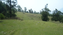 En route to Chopta from Deoria Taal